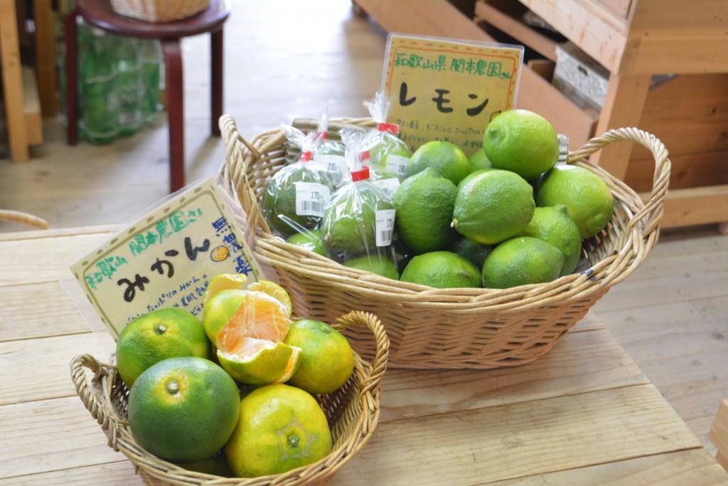 レモンとみかん20161008